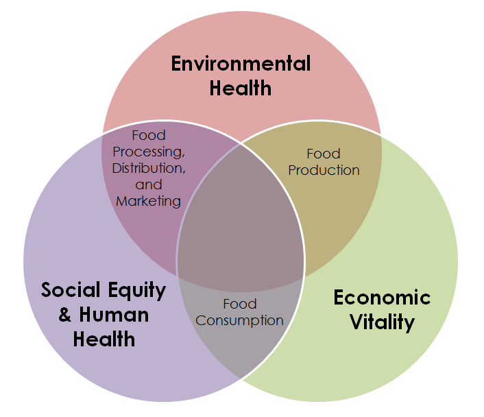 food security We provide a comprehensive review of different approaches to food security  analysis  however, the most important shift was from food availability at the.